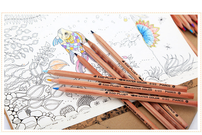 Eco-Friendly Coloured Pencil Set - Driftly,  - Driftly