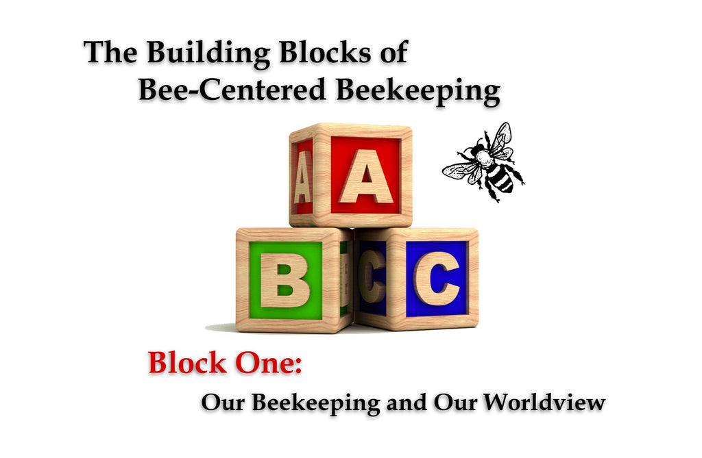 Block One: Our Beekeeping and Our Worldview