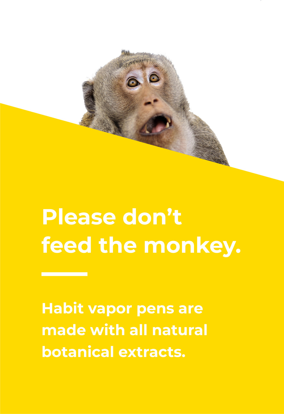Habit Banana Vapor Pen Info