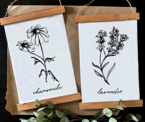 Herbs/black and white print set/botanical wall art/canvas art print/wall art/home decor