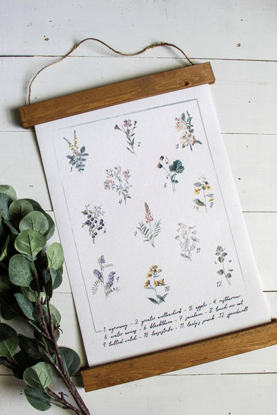 Botanical charts set of 2/botanical print set/botanical wall art/canvas art print/wall art/home decor