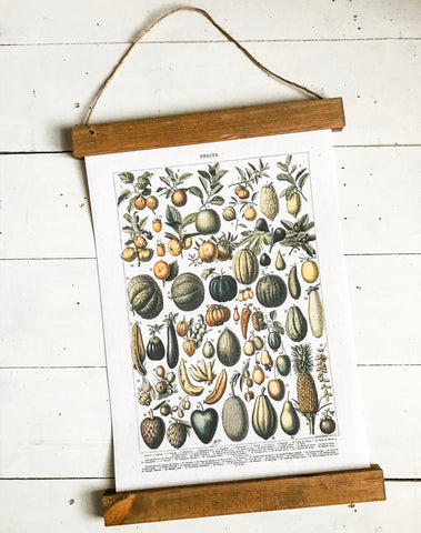 Botanical fruit chart print/vintage kitchen art/botanical chart print/botanical wall art/canvas art print/wall art/home decor