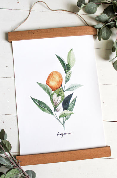 Tangerine print/herb print/botanical wall art/canvas art print/wall art/home decor
