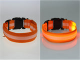 LED Glow Collar with Optional Flashing Light (8 color choices)