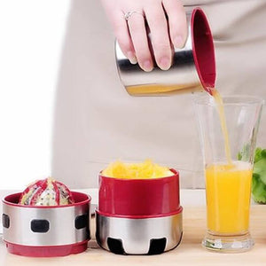 Pour Stainless Steel Orange and Grapefruit Juicer - ToDoTea