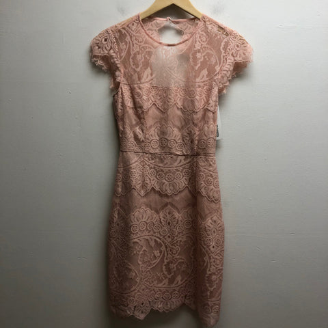 Size 0 BB Dakota Pink Dress