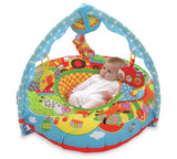Galt Play Nest and Gym Play Mat - David Rogers Toymaster