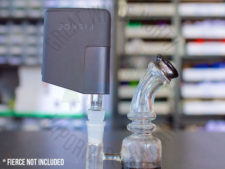 Healthy Rips Fierce Official Water Pipe Adapter