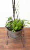 Bespoke Antique Planter w/ Lightning Rod, Galvanized Tub, and Ferns
