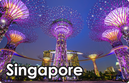 Singapore: Gardens by the Bay Night, 8854093009967