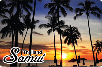 Palm Tree Sunset Samui, 8859194800956