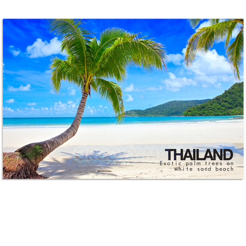Thailand - Palm and White Beach (PC), 8859194801427