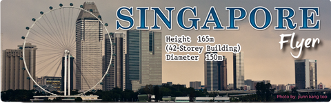 SG Flyer Facts (Long), 8859194803056