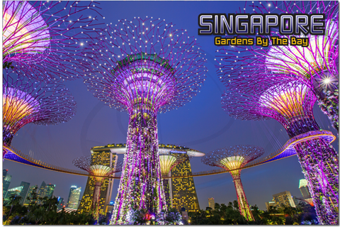 Singapore: PC Gardens By The Bay night 8859194804091