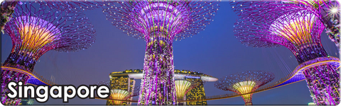 Singapore: Gardens by the Bay Night (Long), 8859194813468