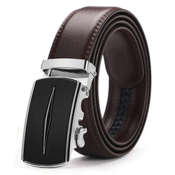 Supremacy Belt - Silver/Brown