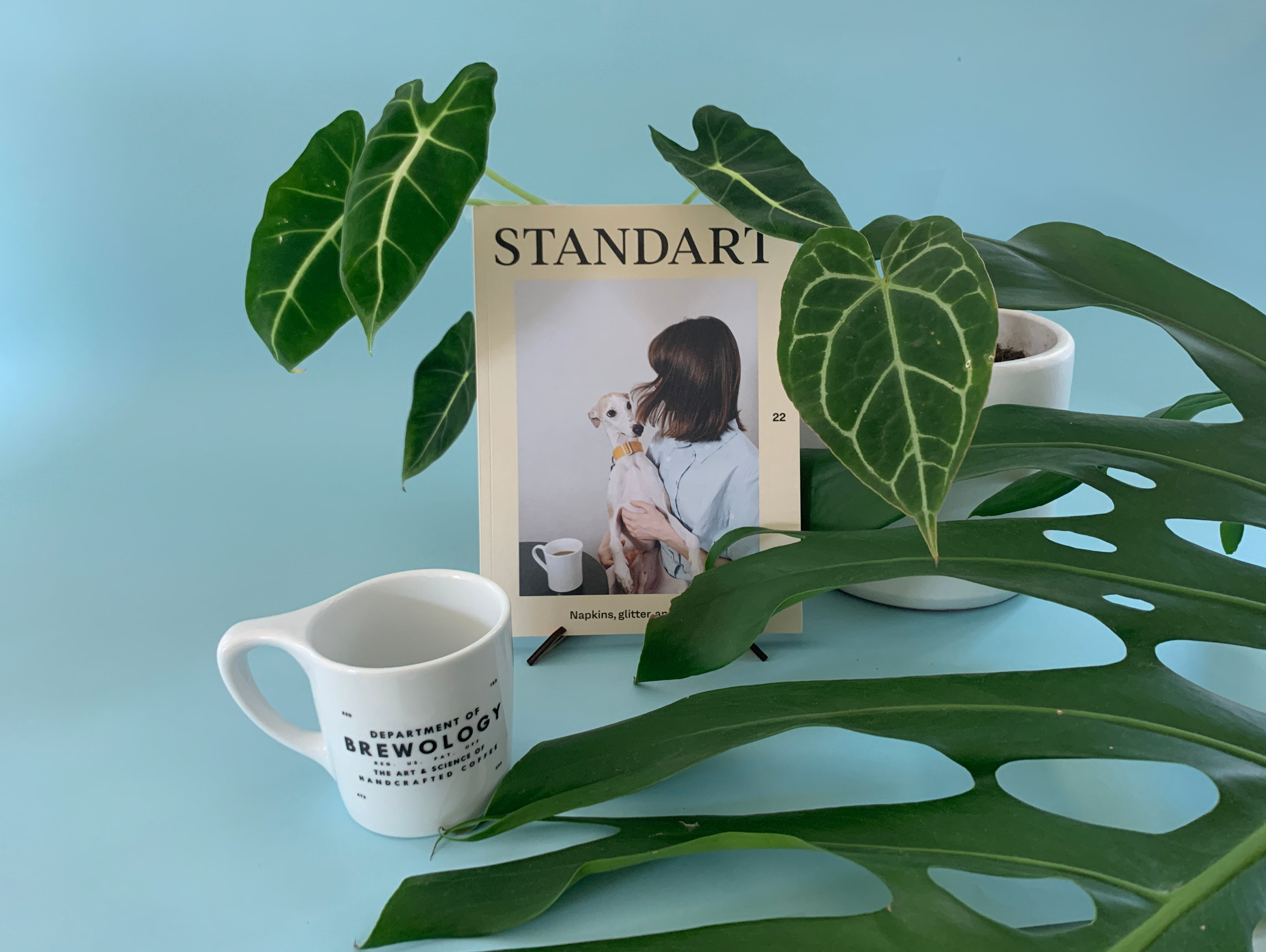 STANDART MAGAZINE - issue no. 22