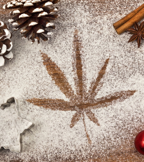 Top 5 Holiday Cannabis Trends of 2020 - Abstrax Tech