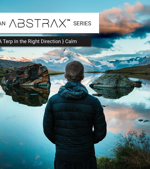 A Terp in the Right Direction: Calm { A Series }