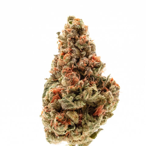 Chemdawg Buds are long and tapered with wispy leaves and orange pistils - Abstrax Tech