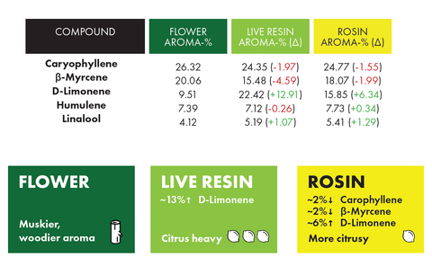 Flower, Live Resin and Rosin Comparison