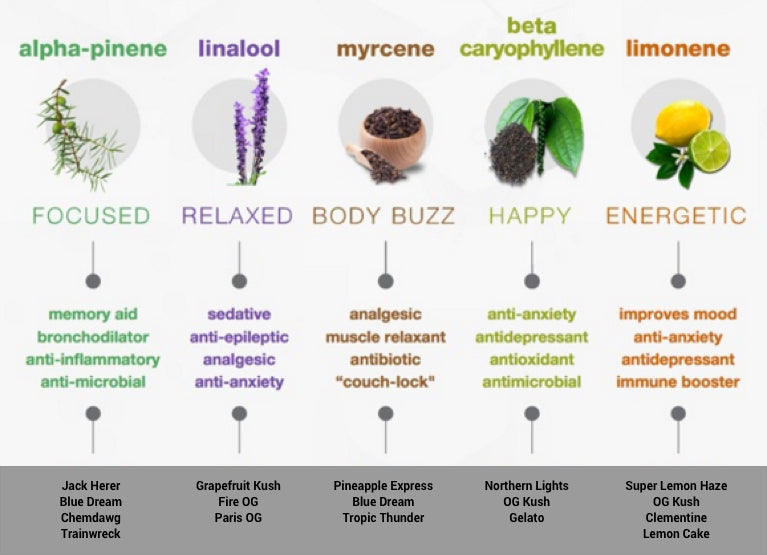 Terpene Effects | Terpene Ingredients | Abstrax Tech