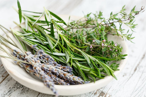 alpha pinene health benefits rosemary herbs white bowl
