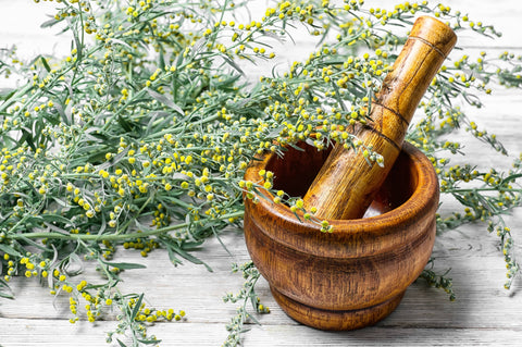 camphor oil antimicrobial anti-fungal wormwood mortar pestle