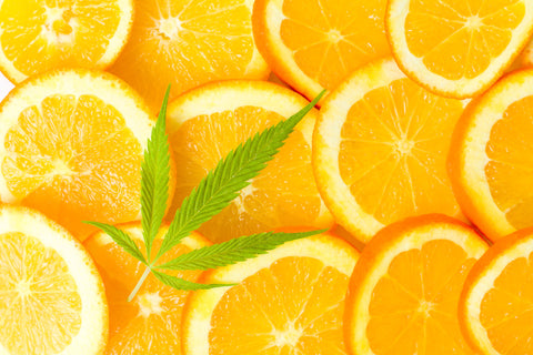 The Orange Soda Terpene Blend is uplifting and relaxing without the couch lock - Abstrax Tech