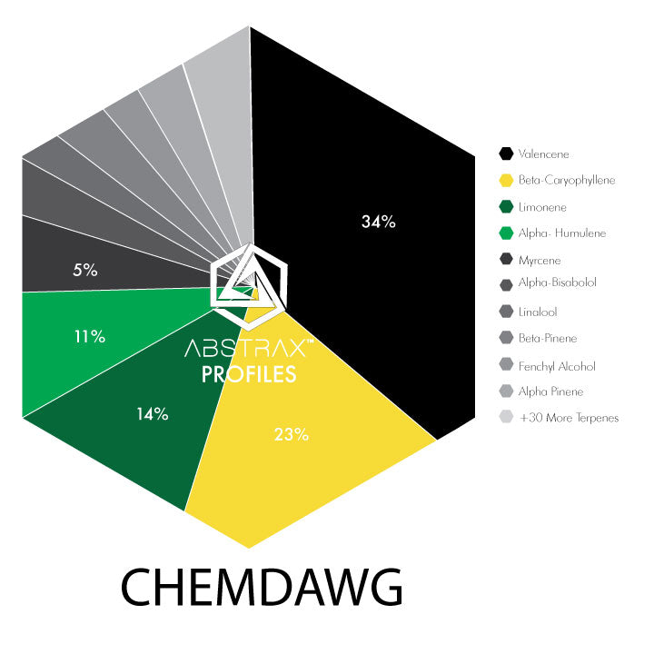 Chemdawg | Terpene Blend | Abstrax Tech