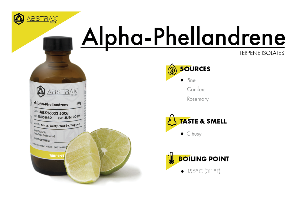 Alpha-Phellandrene | Terpene Isolate | Abstrax Tech