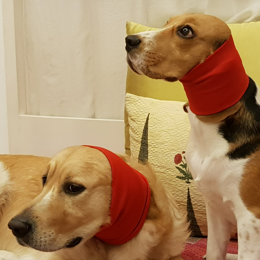 Dog Ear Muffs by PoochMate available online in India