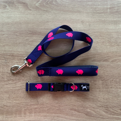 PoochMate Navy Babe Leash & Collar Set