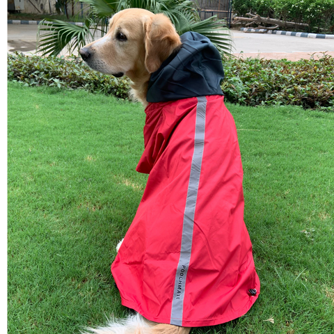 PoochMate Two Toned Rain Coat - Red & Charcoal