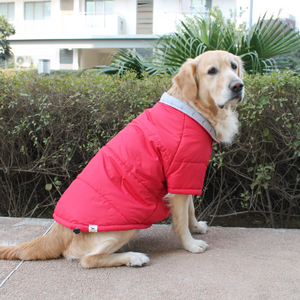 PoochMate Bexley Quilted Coat - Red