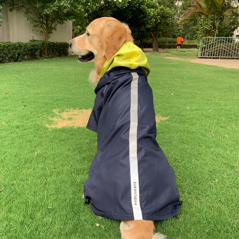PoochMate Two Toned Rain Coat - Navy & Yellow