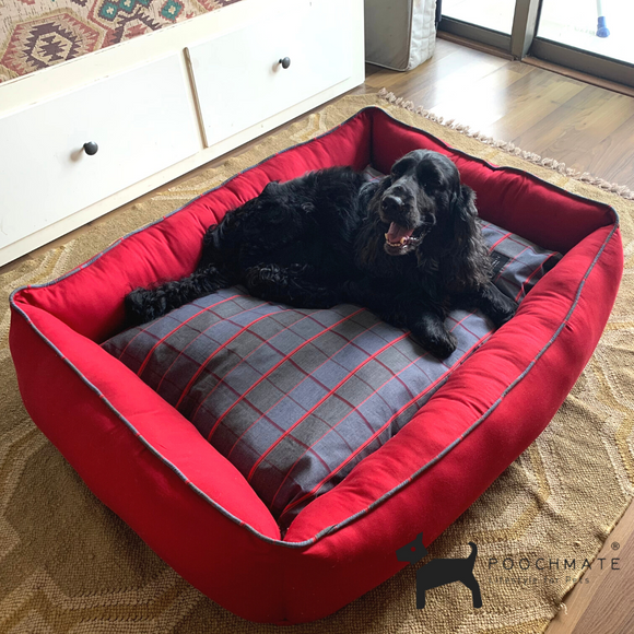 PoochMate Checkmate Bolster Bed - Medium