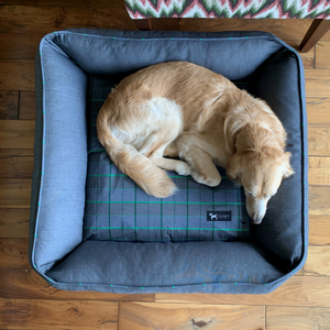 PoochMate Checkmate Bolster Bed - Green & Grey