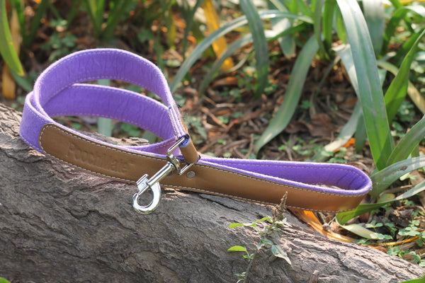 PoochMate Purple Felt Classic Collar and Leash Combo