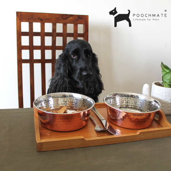 PoochMate Hammered Copper Dog Bowl - Flat Set of 2