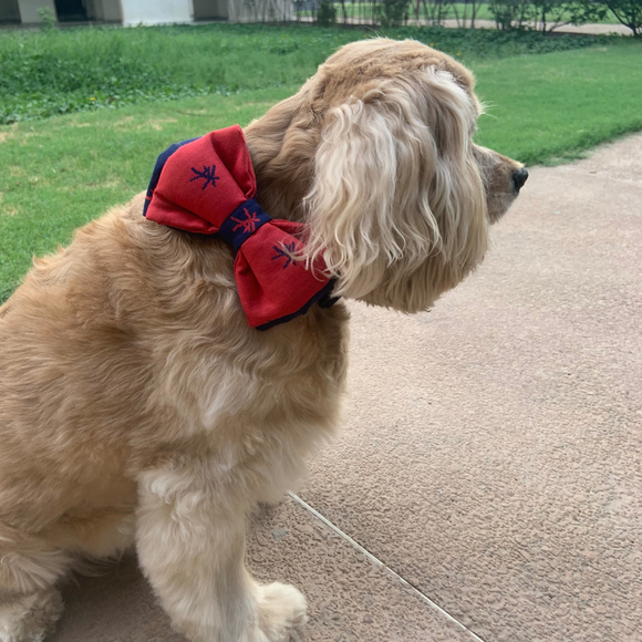 PoochMate Mandarin Bow Tie - Red & Navy