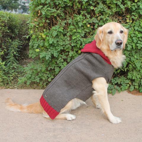PoochMate Milano Hooded Sweater - Sawdust