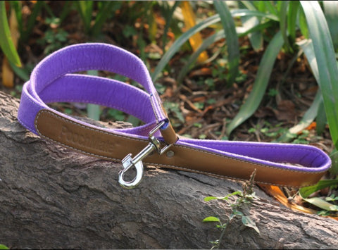 PoochMate Purple Felt Dog Leash - Medium