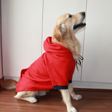PoochMate Red Sweatshirt