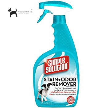 urine odour remover for pet homes simple solutions