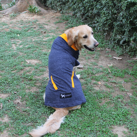 Shop for dog clothes online India. Sizes available. Summer clothes for dogs. Made in India. Shipping worldwide.