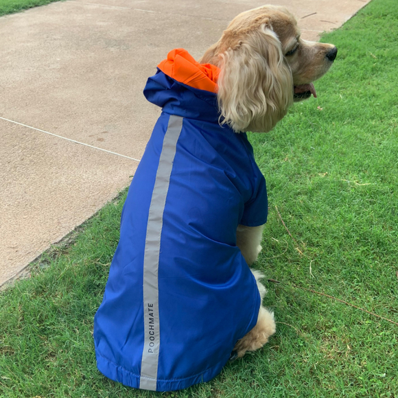 PoochMate Two Toned Rain Coat - Blue & Orange