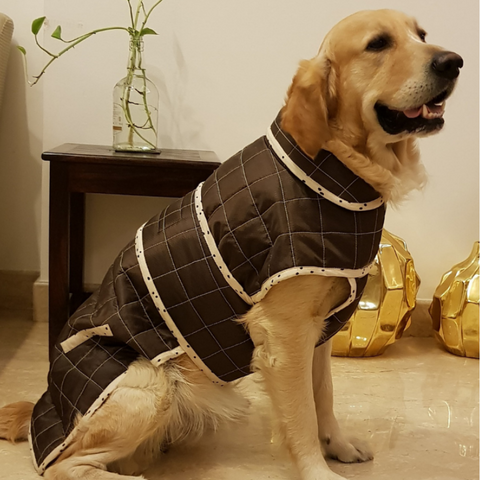 PoochMate Brown Dotty Dog Winter Coat
