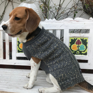 Buy grey dog sweater | Pet sweaters online India | PoochMate