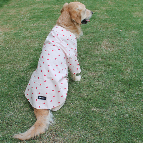 PoochMate Berry Berry Summer Shirt